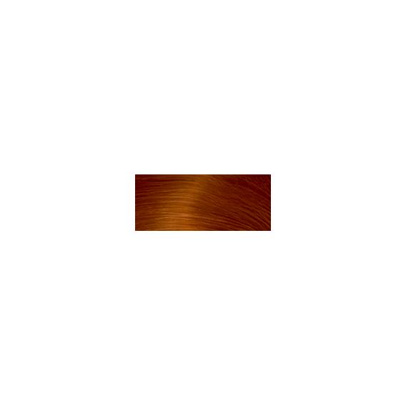 Koleston Tüp Boya
